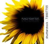 Sunflower Vector Design...
