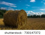 Small photo of hay bale
