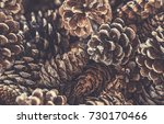 full frame pile of brown dried... | Shutterstock . vector #730170466