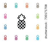 isolated ananas icon. pineapple ... | Shutterstock .eps vector #730171708
