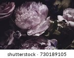 Stock photo bouquet of pink peonies dark background 730189105