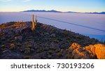 isla incahuasi in bolivia | Shutterstock . vector #730193206