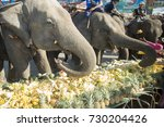 elephants and people at the... | Shutterstock . vector #730204426
