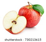 ripe red apple fruit with apple ... | Shutterstock . vector #730213615