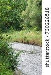 minnehaha creek  | Shutterstock . vector #730226518