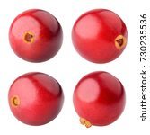 cranberry  clipping path ... | Shutterstock . vector #730235536