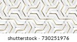3d wall white panels with gold... | Shutterstock . vector #730251976
