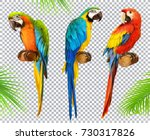 Stock vector ara parrot macaw photo realistic d vector icon set 730317826