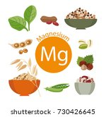 products rich with magnesium.... | Shutterstock .eps vector #730426645