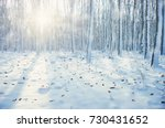 Winter Forest On Sun And Tree...
