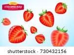 strawberry set  detailed... | Shutterstock .eps vector #730432156