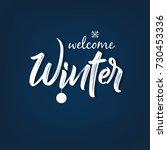 Winter Season design background, Vector Illustration. | Shutterstock vector #730453336