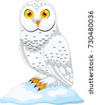 vector illustration of cartoon... | Shutterstock .eps vector #730480036