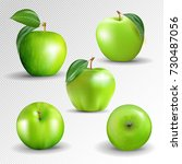 green apples collection... | Shutterstock .eps vector #730487056