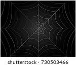 Spider Cobweb   Illustration ...
