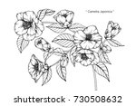 hand drawing and sketch... | Shutterstock .eps vector #730508632