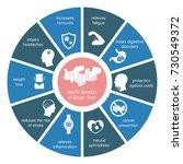 foods infographics. health... | Shutterstock .eps vector #730549372