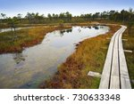 big swamp wetlands kemeri... | Shutterstock . vector #730633348