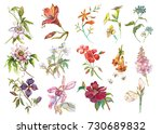 big set watercolor collection... | Shutterstock . vector #730689832