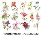 big set watercolor collection... | Shutterstock . vector #730689832