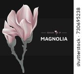 vintage pink magnolia flowers...   Shutterstock .eps vector #730695238