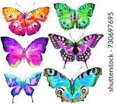 beautiful color butterflies set ... | Shutterstock . vector #730697695
