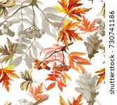 autumn branches and leaves... | Shutterstock . vector #730741186