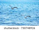 flight over the sea | Shutterstock . vector #730748926