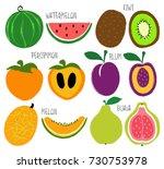 colorful brush grunge fruits... | Shutterstock .eps vector #730753978