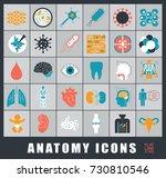 icons presenting various organs ... | Shutterstock .eps vector #730810546
