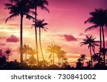 copy space of silhouette... | Shutterstock . vector #730841002