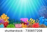 corals with underwater view... | Shutterstock .eps vector #730857208
