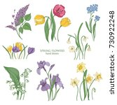 collection of blooming spring... | Shutterstock .eps vector #730922248