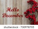 hello december text on red... | Shutterstock . vector #730978705