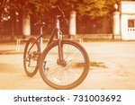 bicycle on top silhouette... | Shutterstock . vector #731003692