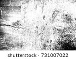 abstract background. monochrome ... | Shutterstock . vector #731007022