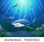Cartoon Shark With Coral Reef...