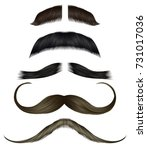 set vector mustache different... | Shutterstock .eps vector #731017036