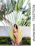 Small photo of Full-length portrait of tanned dark-haired girl in bikini standing beside pam tree. Outdoor photo of serious hispanic lady in swimsuit enjoying vacation at summer resort.