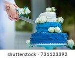 wedding cutting a wedding cake... | Shutterstock . vector #731123392