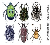 big set of insects  bugs ... | Shutterstock .eps vector #731189668