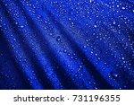 the waterproof fabric  water... | Shutterstock . vector #731196355