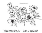hand drawing and sketch... | Shutterstock .eps vector #731213932