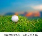 golf on grass  sky background... | Shutterstock . vector #731221516