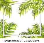 green leaf of palm tree... | Shutterstock . vector #731229595