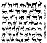 vector large collection of deer ... | Shutterstock .eps vector #731315935