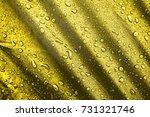 the waterproof fabric  water... | Shutterstock . vector #731321746