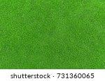 lawn  carpet     Shutterstock . vector #731360065