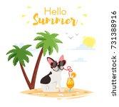 vector cartoon style... | Shutterstock .eps vector #731388916