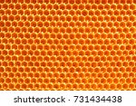 Honeycombs With Honey. Natural...